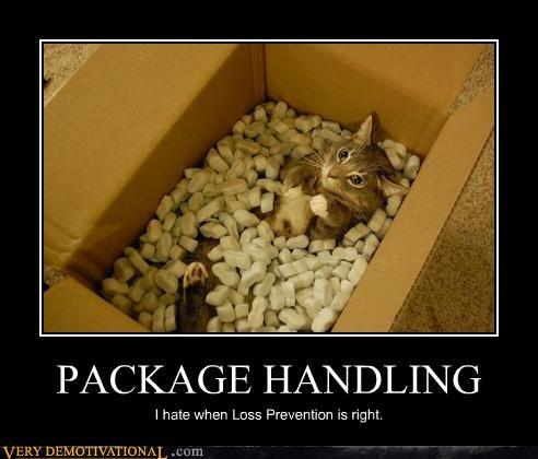 box hilarious kitty wtf - 5412001024