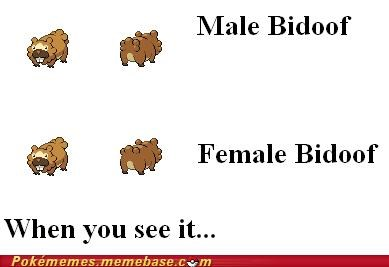 bidoof differences genders Memes when you see it - 5412507136