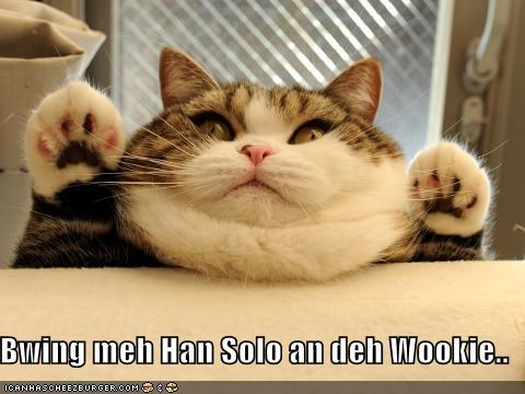 best of week bring me solo cat derp Jabba the Hut star wars - 5413972224