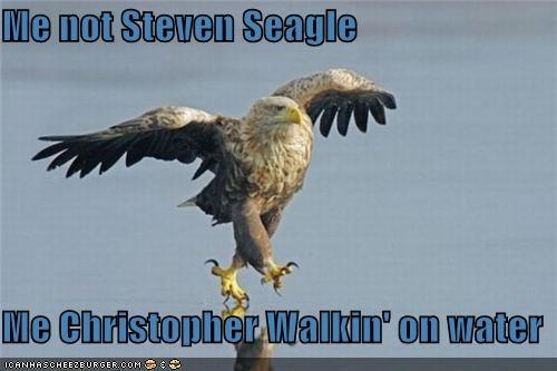 Cheezburger Image 5414862336