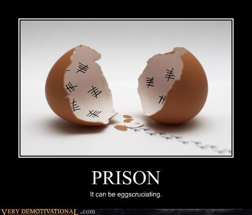 egg egg shell hilarious prison pun - 5415247872