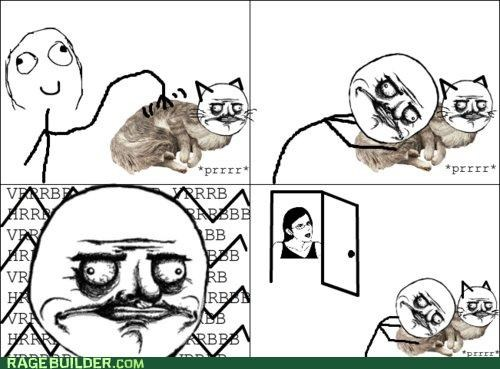 cat,cute,purr,Rage Comics