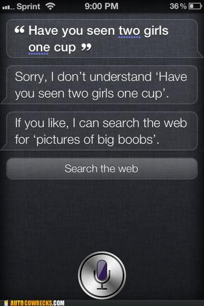 breasts,search,siri,two girls one cup
