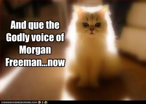 caption captioned cat ceiling cat cue glowing godly light Morgan Freeman now voice - 5416280064