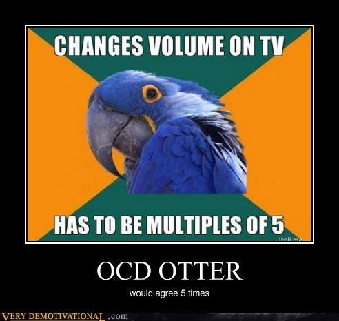 hilarious,ocd,otter,Paranoid Parrot