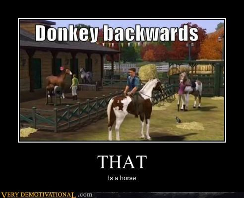 backwards donkey hilarious horse - 5416987648