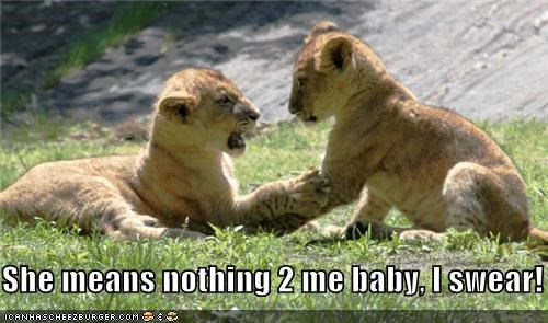 animals cheater cheating dont-be-like-that i promise lion cubs lions love she means nothing