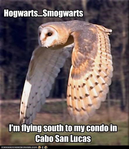 Hogwarts...Smogwarts I'm flying south to my condo in Cabo San Lucas