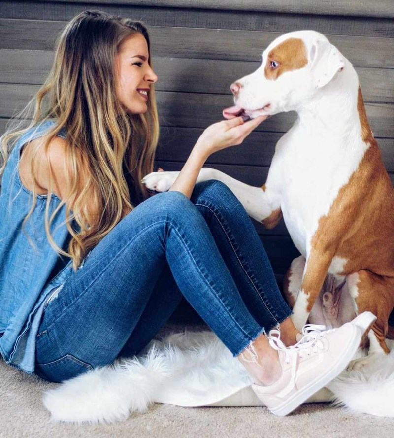 warning pets suffocation owner heartbreaking - 5419269