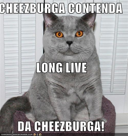 Cheezburger Image 5419406592