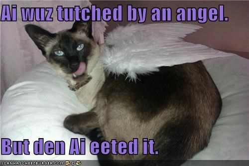 Ai wuz tutched by an angel. But den Ai eeted it.
