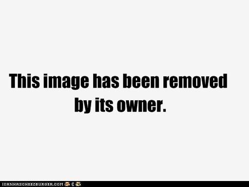 Cheezburger Image 5419838208