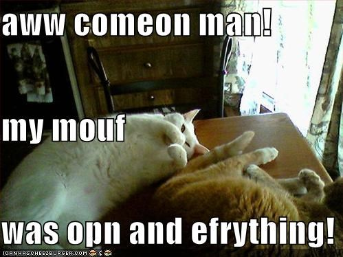 ewww farts indoors lolcats mouths - 542003968