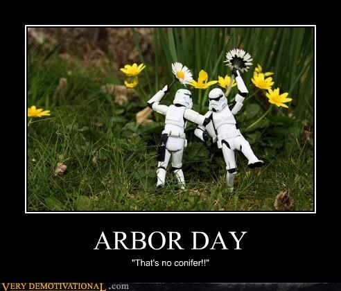 arbor day conifer hilarious stormtrooper wtf - 5420385024