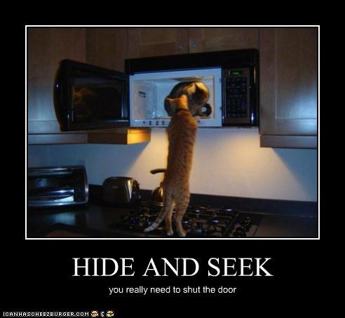 HIDE AND SEEK you really need to shut the door
