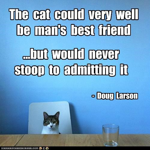The cat could very well be man's best friend ...but would never stoop to admitting it - Doug Larson