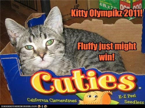 Kitty Olympikz 2011! Fluffy just might win!