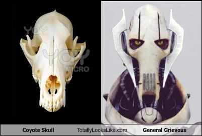 coyote skull funny General Grievous star wars TLL