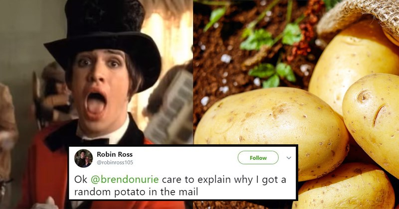 mystery potato Panic at the Disco pop music funny twitter funny tweets emo music emo New Music pray for the wicked - 5421829