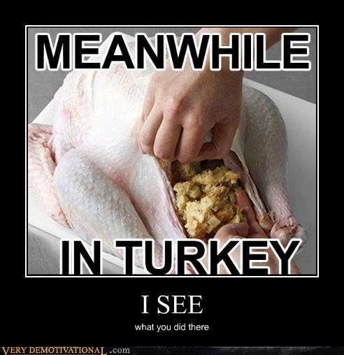 hilarious pun stuffing Turkey - 5422708736