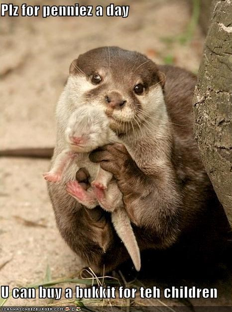 bukkit,children,otters