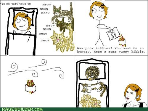 Cats,hungry,Rage Comics,wtf