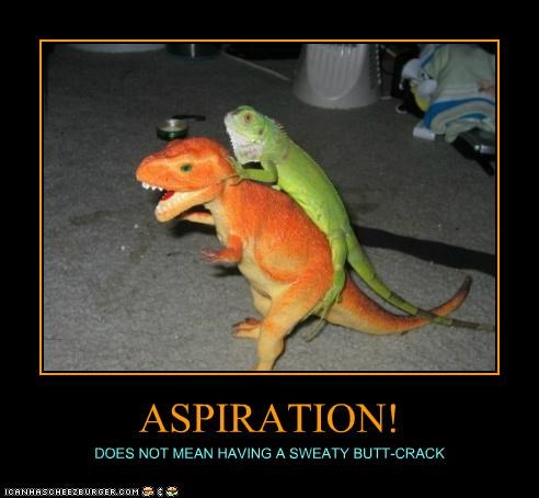 ASPIRATION! DOES NOT MEAN HAVING A SWEATY BUTT-CRACK