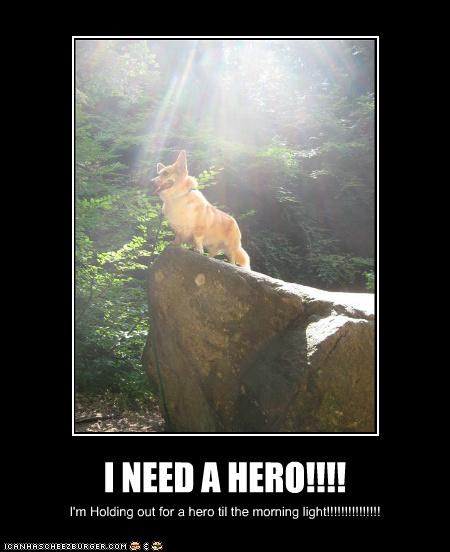 I NEED A HERO!!!! I'm Holding out for a hero til the morning light!!!!!!!!!!!!!!!