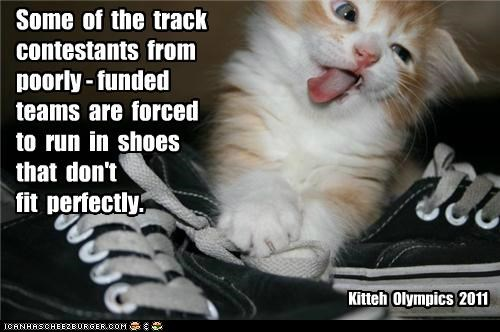 Kitteh Olympics 2011 Some of the track contestants from poorly - funded teams are forced to run in shoes that don't fit perfectly.