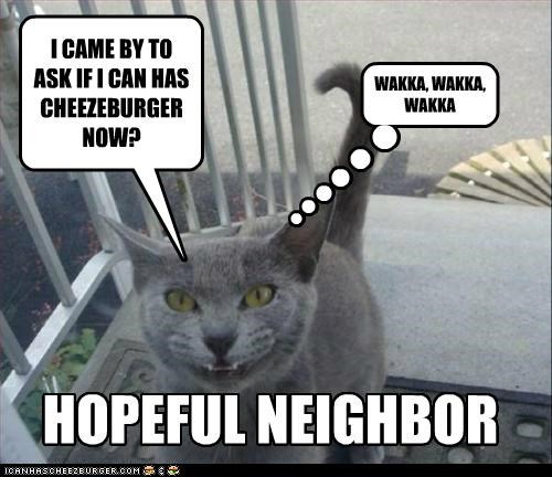 Cheezburger Image 5425015552