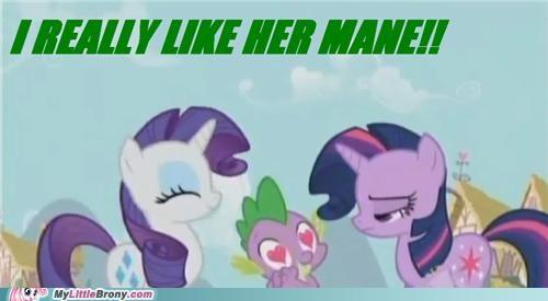 cute mane ponies rarity spike twilight sparkle - 5426843136