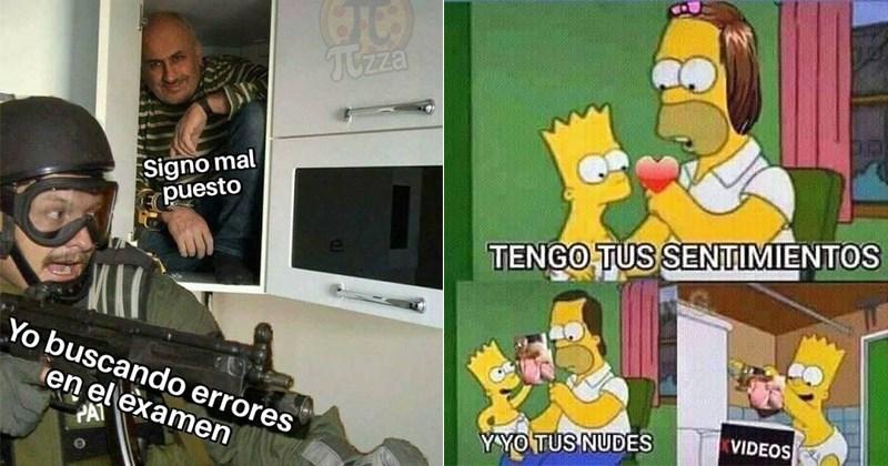 apreciar memes