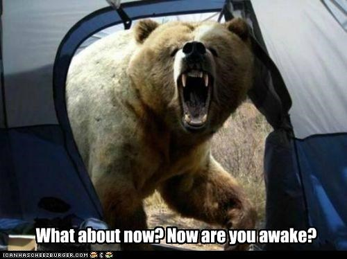 about,awake,bear,caption,captioned,do not want,now,question,scary,sleeping,tent,wake up,what