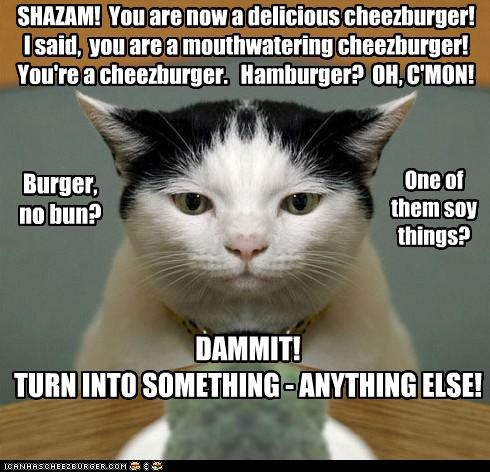 Cheezburger Image 5427442432