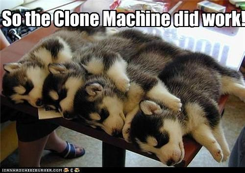 So the Clone Machine did work!