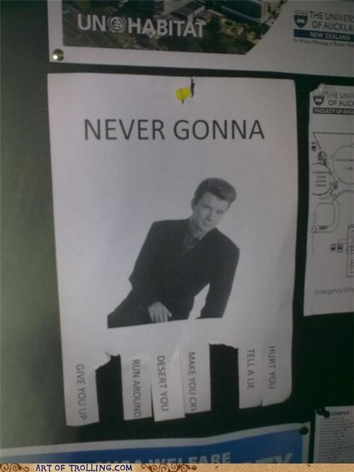 IRL never gonna give you up rick roll sign - 5429064448