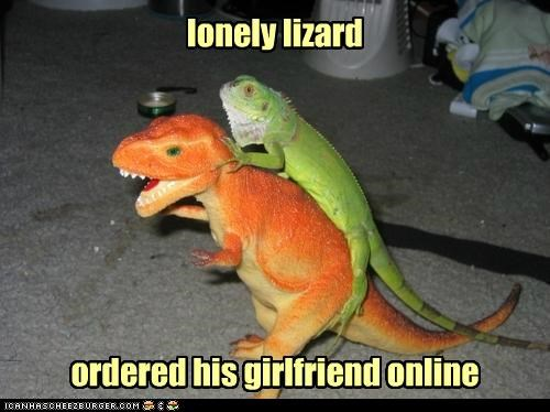 lonely lizard ordered his girlfriend online