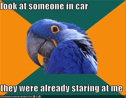 car,gross,Paranoid Parrot,secrets,Staring,what