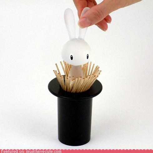 case,hat,holder,magic,rabbit,toothpicks