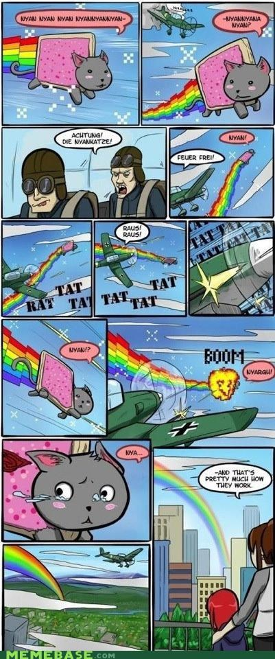 Cats,crash,Nyan Cat,plane,rainbow