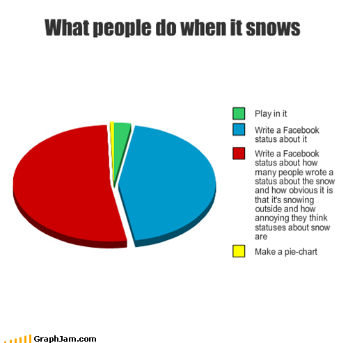 facebook Pie Chart posting self referential snow snow day