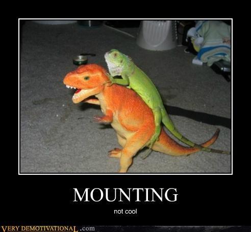 dinosaur hilarious mounting lizard - 5435037184