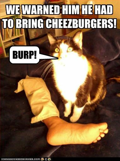 Cheezburger Image 5435139328