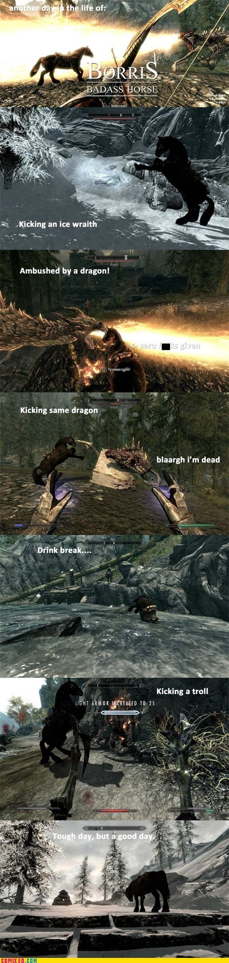 awesome,borris,followers,horses,Skyrim,video games