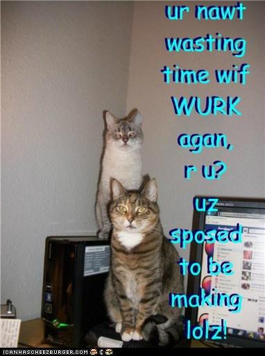 ur nawt wasting time wif WURK agan, r u? uz sposed to be making lolz! ur nawt wasting time wif WURK agan, r u? uz sposed to be making lolz!