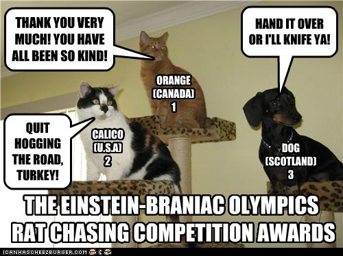 ORANGE (CANADA) 1 CALICO (U.S.A) 2 DOG (SCOTLAND) 3 HAND IT OVER OR I'LL KNIFE YA! QUIT HOGGING THE ROAD, TURKEY! THANK YOU VERY MUCH! YOU HAVE ALL BEEN SO KIND! THE EINSTEIN-BRANIAC OLYMPICS RAT CHASING COMPETITION AWARDS