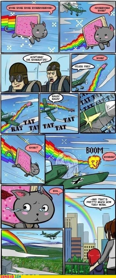 best of week,boom,meme,Nyan Cat,rainbows,the internets