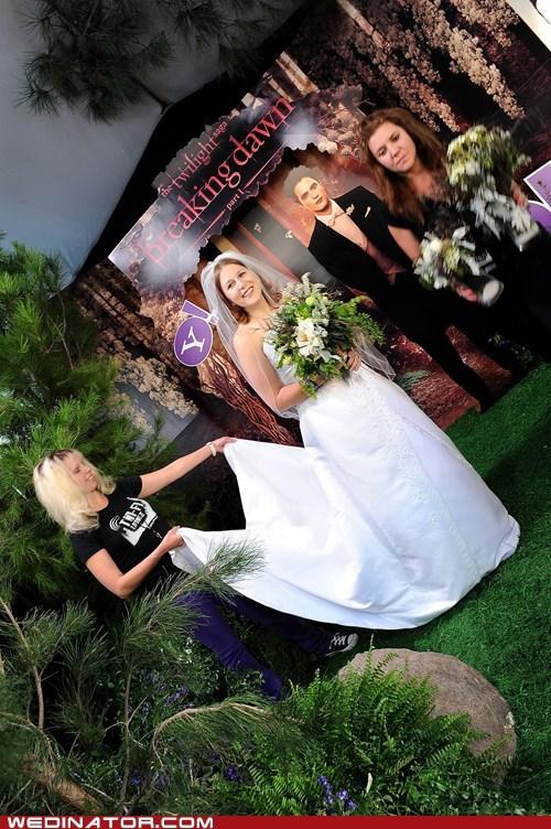 breaking dawn funny wedding photos movies twilight wedding dress - 5436018944