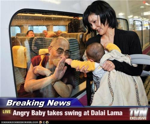 baby Dalai Lama political pictures - 5436084736