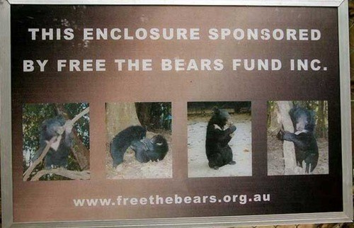 dont-free-the-bears sign of the times - 5436192256